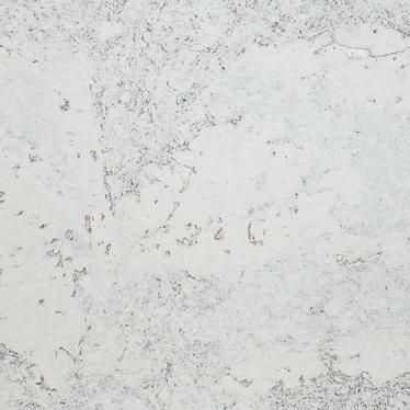 Пробка для стен Wicanders Dekwall Flores White RY07001 - купить в «Начни Ремонт» интернет-магазин — продажа напольных покрытий. - 1