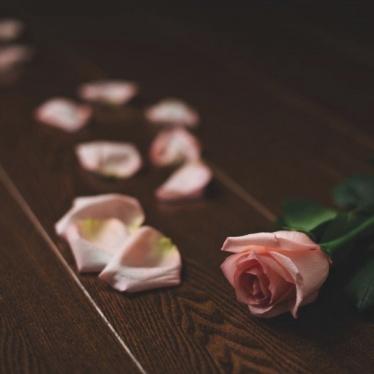 Паркетная доска Amber Wood Ясень Шоколад - купить в «Начни Ремонт» интернет-магазин — продажа напольных покрытий. - 1
