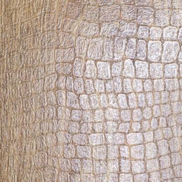 Ламинат Ritter Дуб Премиум - купить в «Начни Ремонт» интернет-магазин — продажа напольных покрытий. - 1