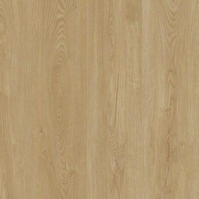 Concept Floor Дуб Champagne