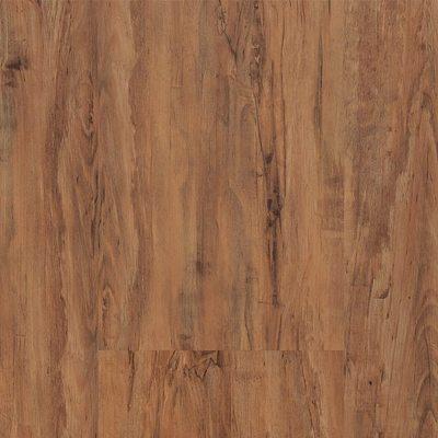 Progress 251 Pine Exotic